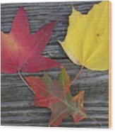 The Fallen Leaves Of Autumn Wood Print