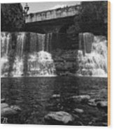 The Falls In Black And White Wood Print