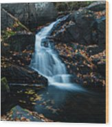 The Falls Of Black Creek In Autumn II Wood Print