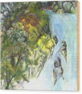 The Falls Wood Print