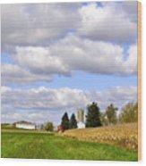 The Farmers Fields Wood Print