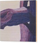 The Fencepost Wood Print by Judith Espinoza