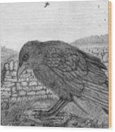 The Fledgling Wood Print