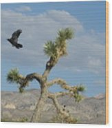 The Flight Of Raven. Lucerne Valley. Wood Print
