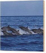 The Flight Of The Spinner Dolphin Wood Print