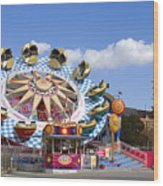 The Flipper At The Prater Wood Print