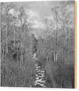 The Florida Trail Wood Print