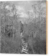 The Florida Trail Wood Print