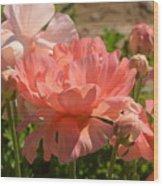 The Flower Field Season Wood Print