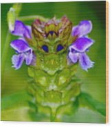 The Flower King Wood Print