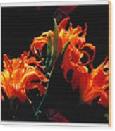 The Flower Of Fire Wood Print