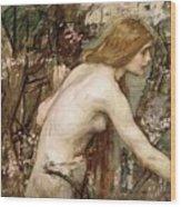 The Flower Picker Study John William Waterhouse Wood Print