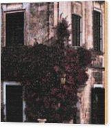 The Flower Shop Malta Wood Print