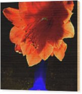 The Flower Of Cactus In A Blue Vase. Wood Print