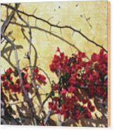 The Flowers Of Carmel 2 Wood Print