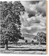 Old John Bradgate Park Wood Print