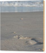 The Footprint Of Invisible Man The Sand And The Sea Wood Print