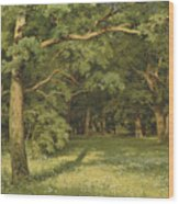 The Forest Clearing Wood Print