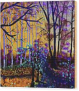 The Forest - Yellow Pond  Wood Print
