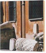 The Forum Photograph Wood Print