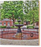 The Fountain At Radford University Wood Print