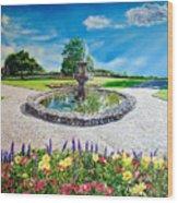 Gushing Fountain Wood Print