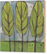 the Four Seasons - spring Wood Print