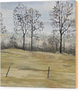 The French Countryside Wood Print