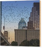 The Frost Bank Tower Stands Guard As 1.5 Million Mexican Free-tail Bats Overtake The Austin Skyline As They Exit The Congress Avenue Bridge Wood Print