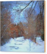 The Frozen Creek Wood Print