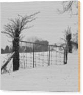 The Frozen Gate Black And White Wood Print