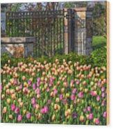 The Garden Enterance Wood Print