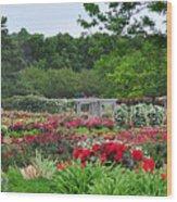 The Garden Of Bloom Wood Print