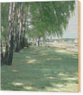 The Garden Of The Artist In Wannsee Wood Print