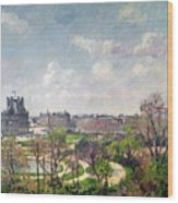The Garden Of The Tuileries Wood Print