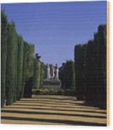 The Gardens Of The Alcazar Of Catholic Wood Print
