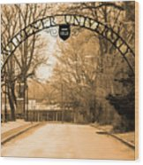 The Gate At Widener University Wood Print