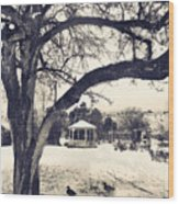 The Gazebo Wood Print