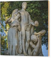 The Genius Maria Luisa Park Seville Spain Wood Print