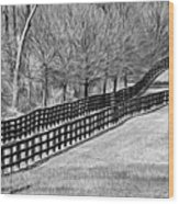 The Geometry Of Spring - Paint Bw Wood Print