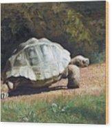 The Giant Tortoise Is Walking Wood Print