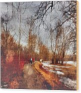 The Girl On The Path Wood Print