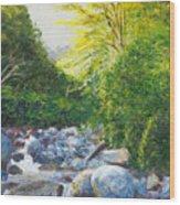 The Gladeburn Beside The Milford Track Fiordland New Zealand Wood Print
