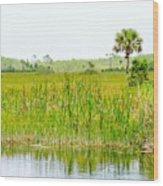 The Glades Wood Print