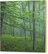 The Gloaming Wood Print