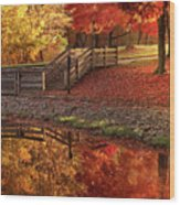 The Glory Of Autumn Wood Print