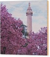 The Glory Of Spring In Mount Vernon Place, Baltimore Wood Print