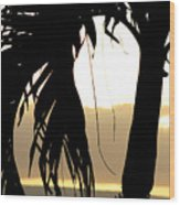 The Glow Of Maui Wood Print
