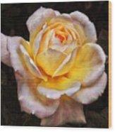 The Glowing Rose Wood Print