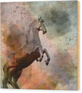 The Golden Horse Wood Print